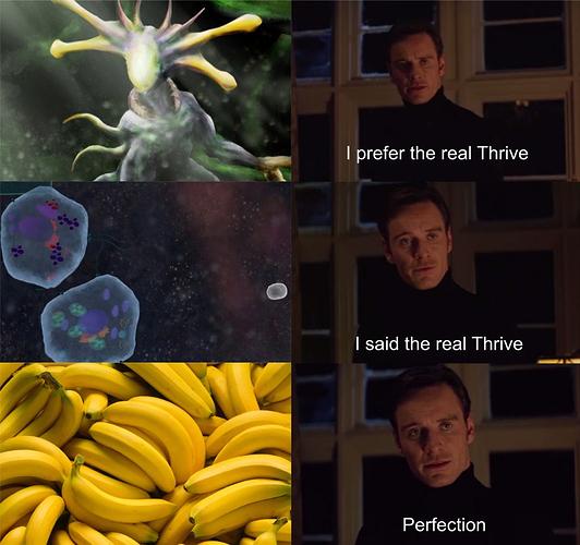Meme%203